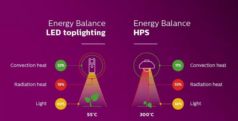 LED grow light VS HPS